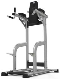 Bild von Exigo Leg Raise / Dip Station Model 2018