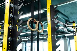 Bild für Kategorie ELEMENT FITNESS FUNCTIONAL INDOOR & OUTDOOR RIG AND RACKS